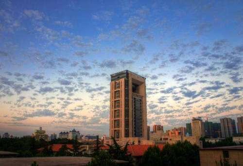 留学机构的甄别及生涯规划指导